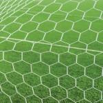GoalLarge-01